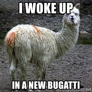 Drama Llama - i woke up in a new bugatti