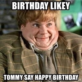 TommyBoy  - Birthday likey Tommy Say happy birthday
