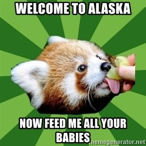 Red Panda - welcome to alaska now feed me all your babies