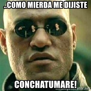 What If I Told You - ..como mierda me dijiste conchatumare!