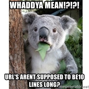 surprised koala - whaddya mean!?!?! Url's arent supposed to be10 lines long?