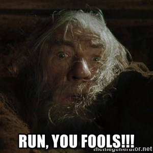 gandalf run you fools closeup -  run, you fools!!!