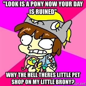 """rabid idiot brony - """"lOOK IS A PONY NOW YOUR DAY IS RUINED"""" WHY THE HELL THERES little pet shop on my little brony?"""