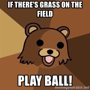 Pedobear - if there's grass on the field play ball!