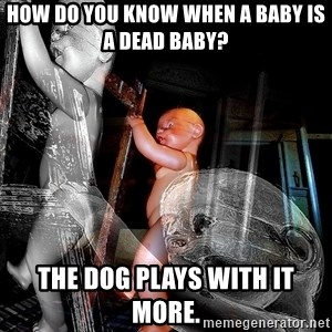 dead babies - How do you know when a baby is a dead baby?  The dog plays with it more.
