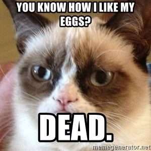 Angry Cat Meme - You Know how I like My EgGs? dead.
