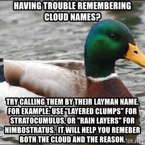 "Actual Advice Mallard 1 - Having trouble remembering cloud names? Try calling them by their layman name. for example: use ""layered clumps"" for stratocumulus, or ""rain layers"" for nimbostratus.  It will help you remeber both the cloud and the reason."