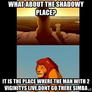 Lion King Shadowy Place - what about the shadowy place? it is the place where the man with 2 viginitys live,dont go there simba