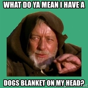 Jedi mind trick - what do ya mean I have a dogs blanket on my head?