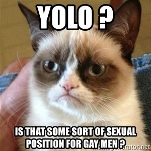 Grumpy Cat  - yolo ? is that some sort of sexual position for gay men ?
