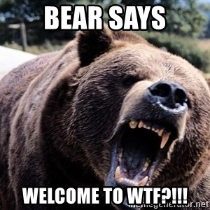 Bear week - Bear says welcome to wtf?!!!