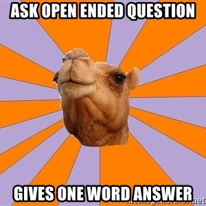 Foul Bachelor Camel - Ask open ended question gives one word answer