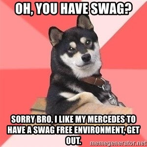 Cool Dog - oh, you have swag? sorry bro, i like my mercedes to have a swag free environment, get out.
