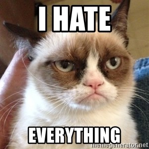 Mr angry cat - I Hate everything