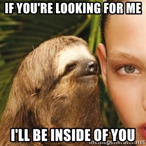 The Rape Sloth - If you're looking for Me I'll be inside of you