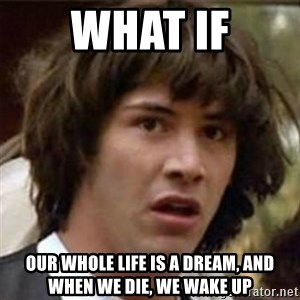 what if meme - what if our whole life is a dream, and when we die, we wake up