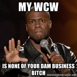 Kevin Hart - my wcw is none of your dam business bitch