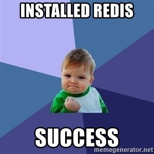 Success Kid - Installed redis  success