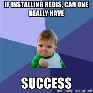 Success Kid - if installing redis, can one really have  success