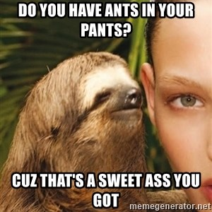 The Rape Sloth - Do you have ants in your pants? cuz that's a sweet ass you got