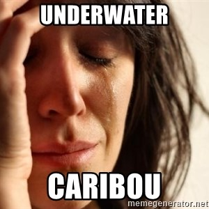 First World Problems - UNDERWATER CARIBOU
