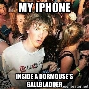 -Sudden Clarity Clarence - MY IPHONE INSIDE A DORMOUSE'S GALLBLADDER