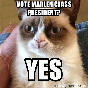 Grumpy Cat Happy Version - vote marlen class president? yes