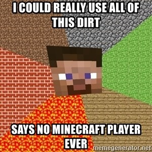 Minecraft Guy - i could really use all of this dirt says no minecraft player ever