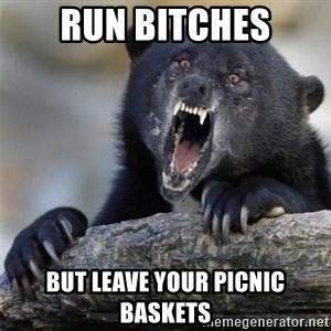Insane Confession Bear - RUN BITCHES BUT leave your picnic baskets