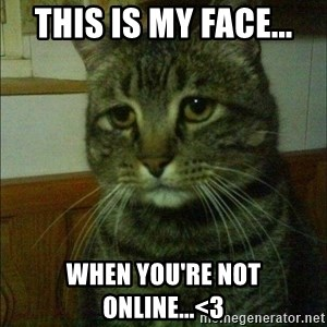 Depressed cat 2 - This is my face... When you're not online...<3