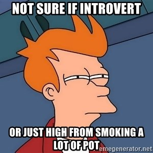 Futurama Fry - Not sure if introvert or just high from smoking a lot of pot
