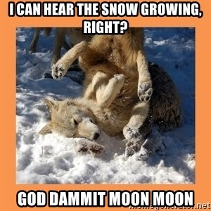 Moon Moon - I can hear the snow growing, right? God dammit moon moon
