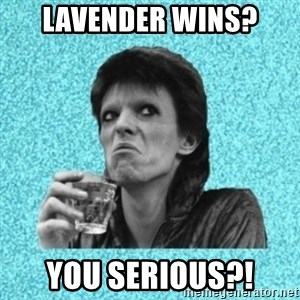 Disturbed Bowie - LAVENDER WINS? YOU SERIOUS?!
