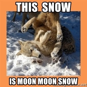 Moon Moon - THis  snow  Is moon moon snow