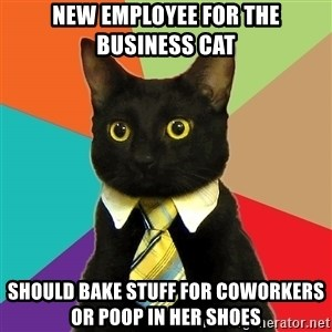 Business Cat - NEw employee for the business cat Should Bake stuff for coworkers or poop in her shoes