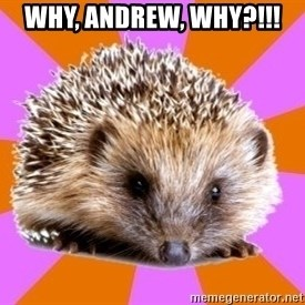 Homeschooled Hedgehog - Why, Andrew, why?!!!