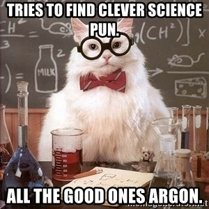 Chemistry Cat - tries to find clever science pun. all the good ones argon.