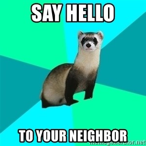 Obvious Question Ferret - Say HELLO To Your neighbor