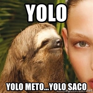 The Rape Sloth - YOLO Yolo meto...yolO saco