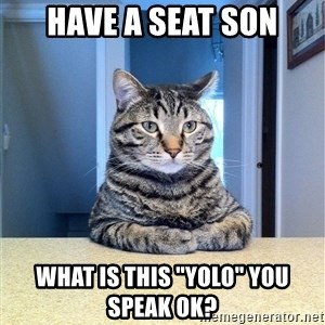 "Chris Hansen Cat - HAVE A SEAT SON WHAT IS THIS ""YOLO"" YOU SPEAK OK?"