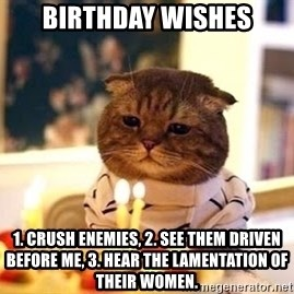 Birthday Cat - Birthday WishES 1. crush enemies, 2. see them driven before ME, 3. hear the lamentation of their women.