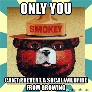 Smokey the Bear - only you CAN'T PREVENT A SOCAL WILDFIRE FROM GROWING