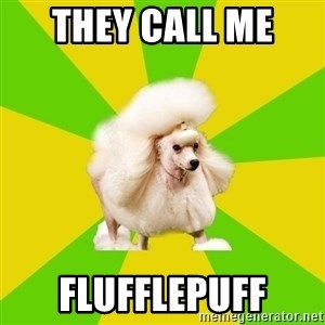 Pretentious Theatre Kid Poodle - THEY CALL ME  FLUFFLEPUFF