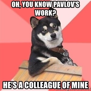 Cool Dog - Oh, you know Pavlov's work? He's a COLLEaGue of mine