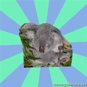 Clinically Depressed Koala -