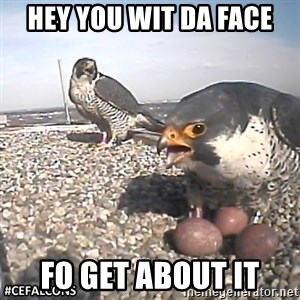 #CEFalcons - Hey you wit da face Fo get about it