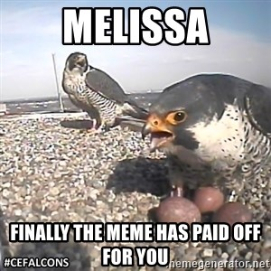 #CEFalcons - melissa finally the meme has paid off for you
