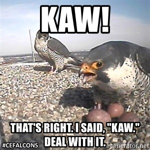 "#CEFalcons - KAW! That's right. I said, ""Kaw."" deal with it."