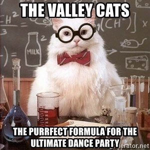 Chemistry Cat - the valley cats the purrfect formula for the ultimate dance party