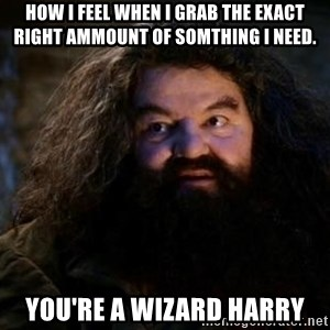how i feel when i grab the exact right ammount of somthing i need youre a wizard harry yer a wizard harry hagrid meme generator